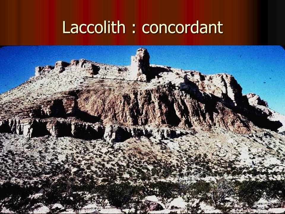 Laccolith : concordant