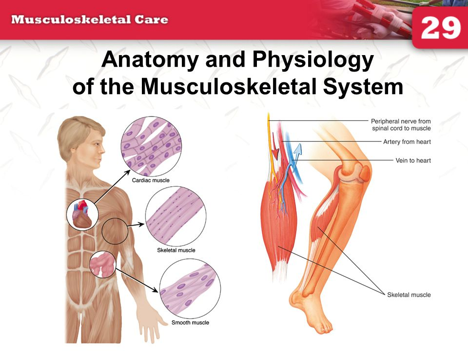 You are the provider continued What is the mechanism of injury.