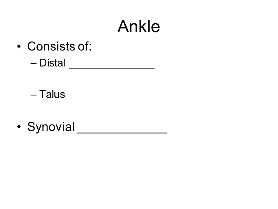 Ankle Consists of: –Distal ______________ –Talus Synovial _____________