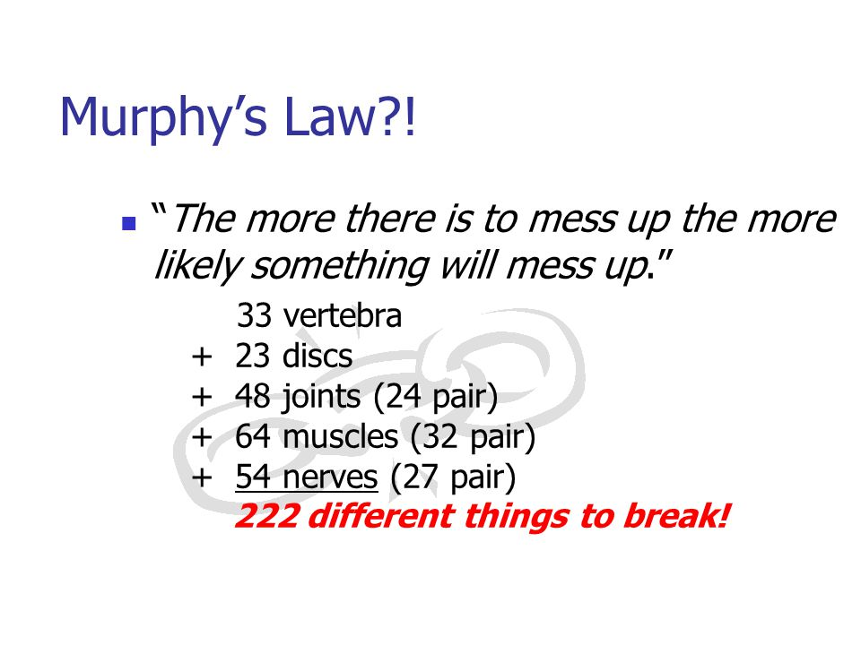 """The more there is to mess up the more likely something will mess up."" 33 vertebra + 23 discs + 48 joints (24 pair) + 64 muscles (32 pair) + 54 nerves"