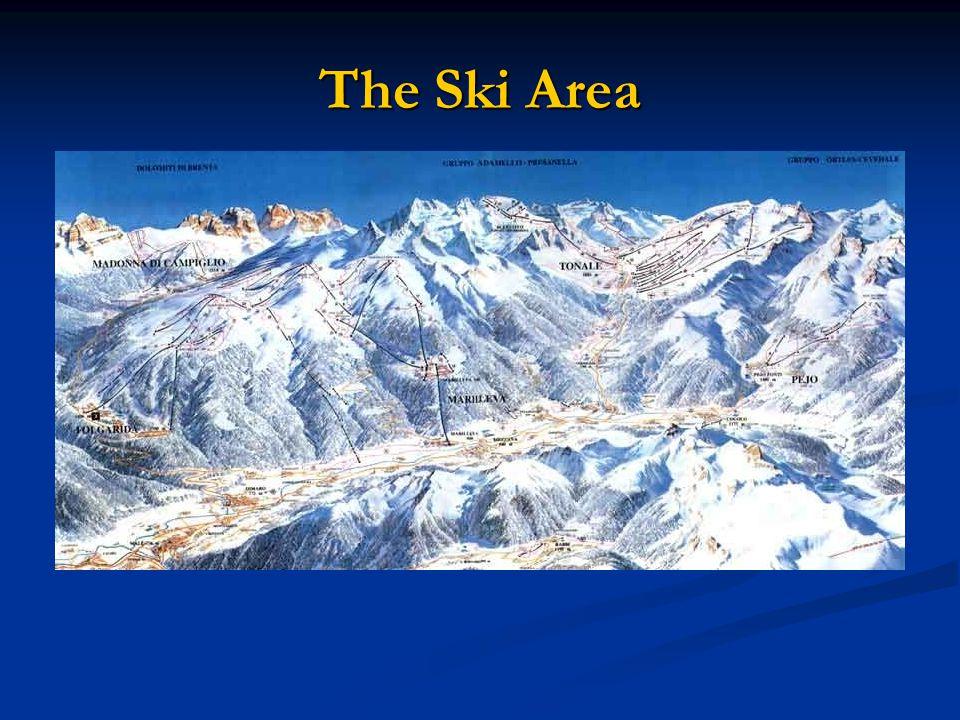 The Ski Area
