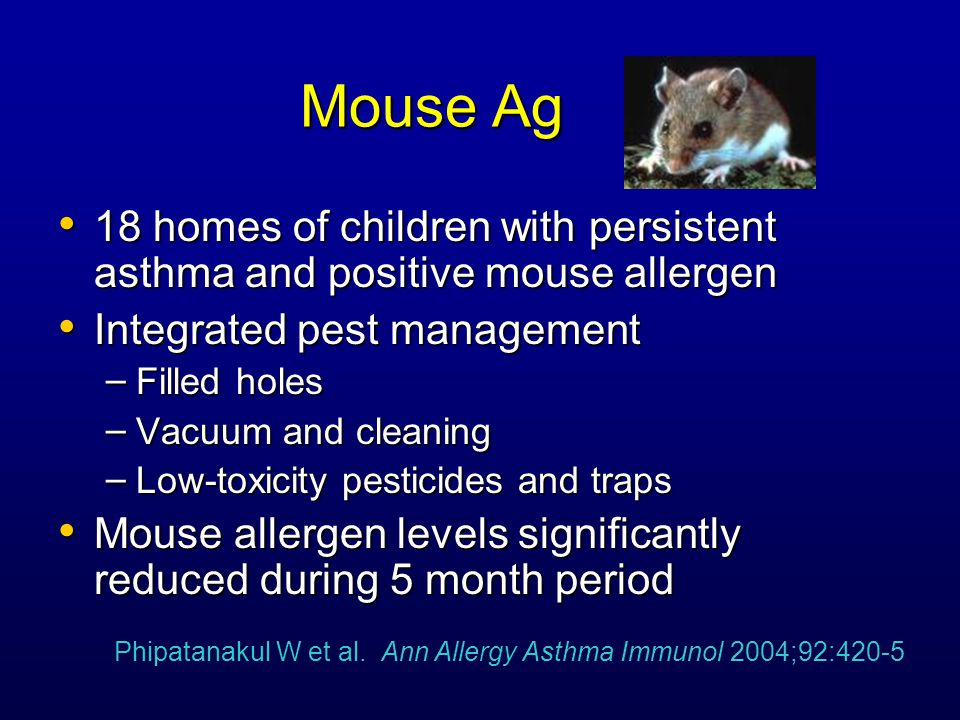 Mouse Ag 18 homes of children with persistent asthma and positive mouse allergen 18 homes of children with persistent asthma and positive mouse allergen Integrated pest management Integrated pest management – Filled holes – Vacuum and cleaning – Low-toxicity pesticides and traps Mouse allergen levels significantly reduced during 5 month period Mouse allergen levels significantly reduced during 5 month period Phipatanakul W et al.