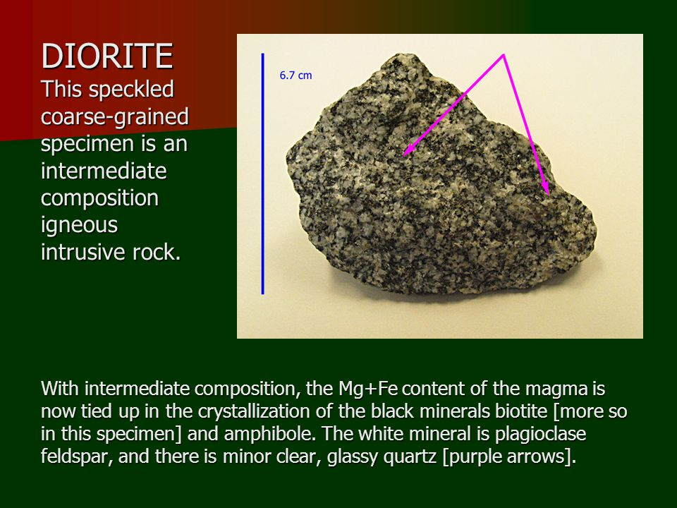 DIORITE This speckled coarse-grained specimen is an intermediate composition igneous intrusive rock.