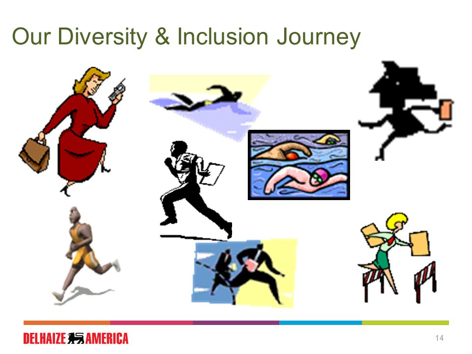 Our Diversity & Inclusion Journey 14
