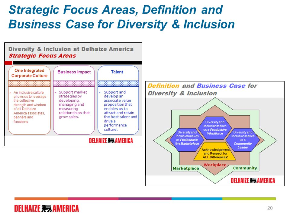 20 Strategic Focus Areas, Definition and Business Case for Diversity & Inclusion