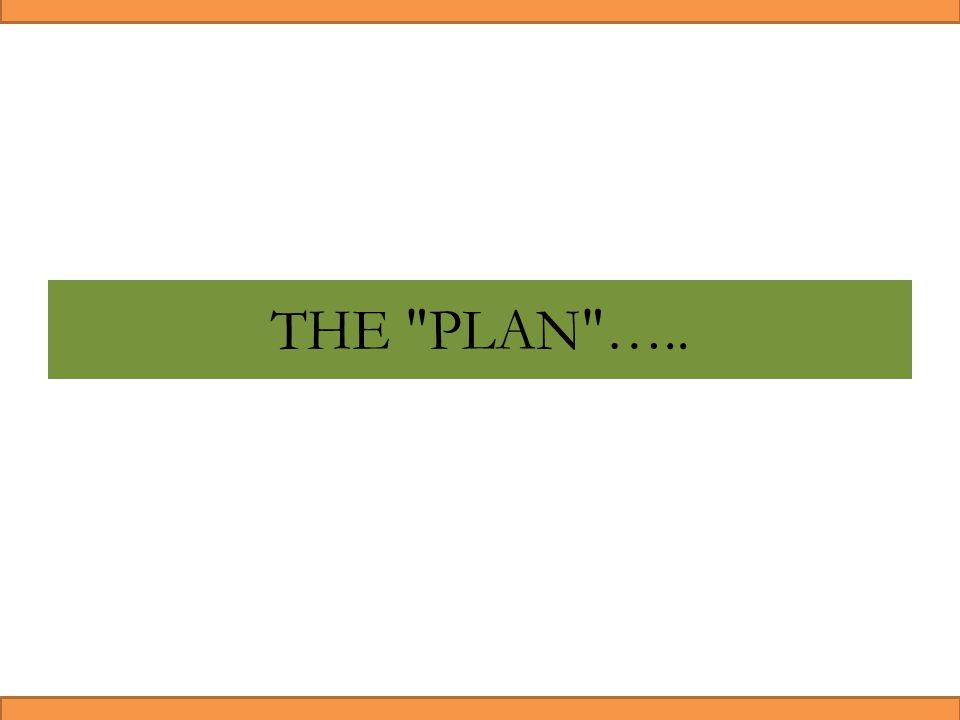 THE PLAN …..