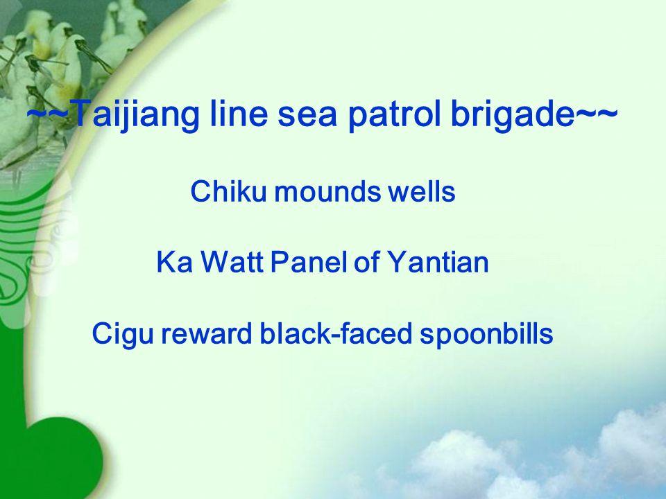 ~~Taijiang line sea patrol brigade~~ Chiku mounds wells Ka Watt Panel of Yantian Cigu reward black-faced spoonbills