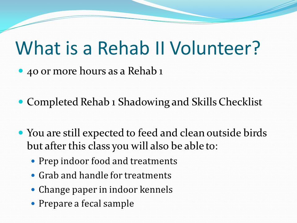 What is a Rehab II Volunteer.