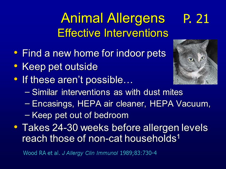 Animal Allergens Effective Interventions Find a new home for indoor pets Find a new home for indoor pets Keep pet outside Keep pet outside If these aren't possible… If these aren't possible… – Similar interventions as with dust mites – Encasings, HEPA air cleaner, HEPA Vacuum, – Keep pet out of bedroom Takes 24-30 weeks before allergen levels reach those of non-cat households 1 Takes 24-30 weeks before allergen levels reach those of non-cat households 1 P.