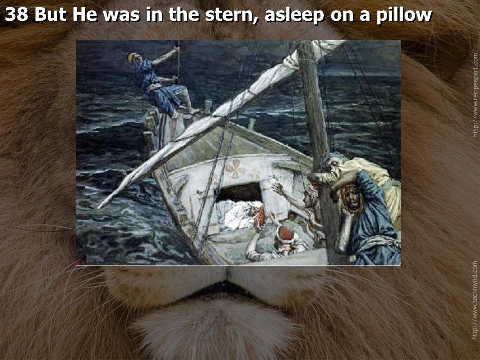 38 But He was in the stern, asleep on a pillow