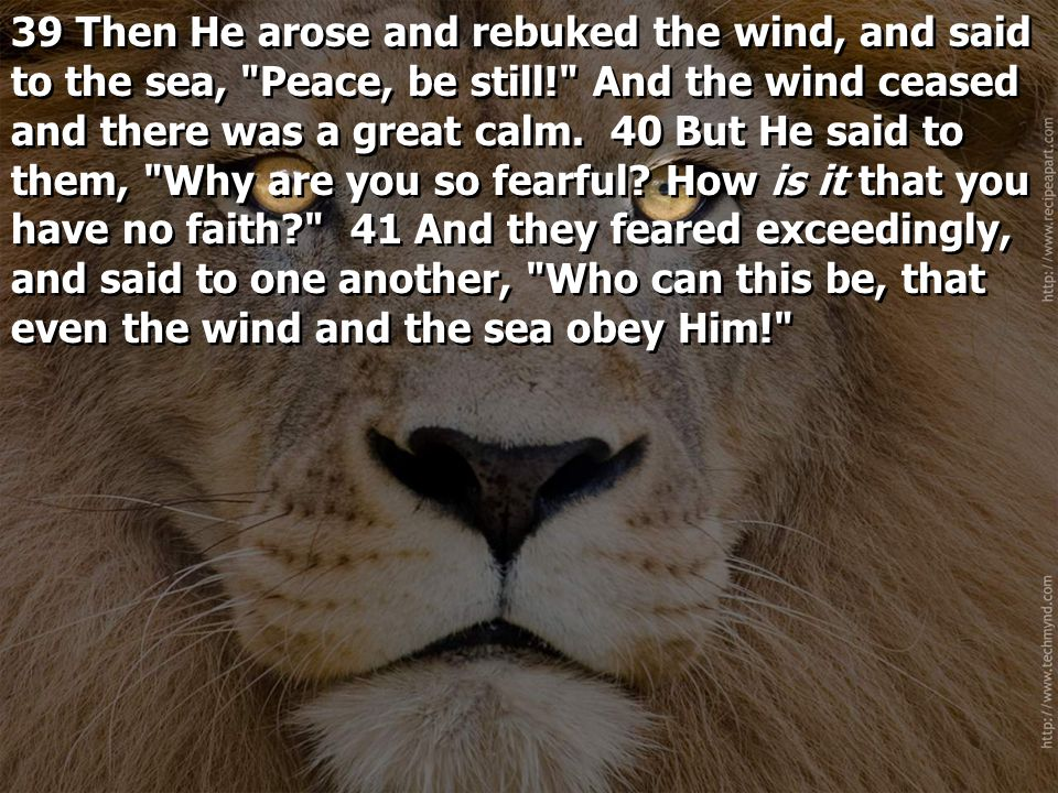 39 Then He arose and rebuked the wind, and said to the sea, Peace, be still! And the wind ceased and there was a great calm.