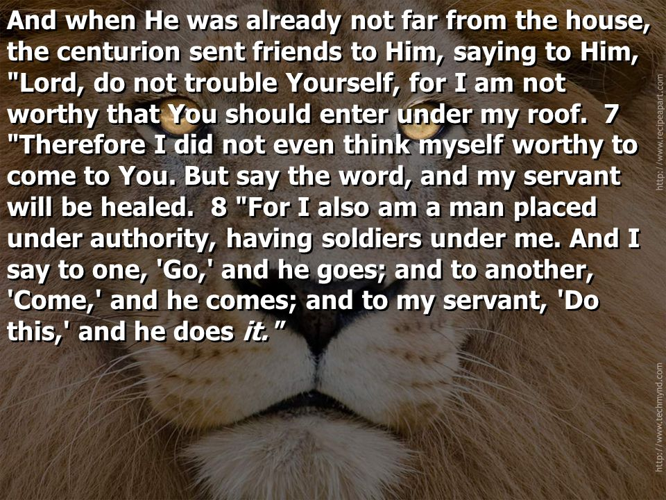 And when He was already not far from the house, the centurion sent friends to Him, saying to Him, Lord, do not trouble Yourself, for I am not worthy that You should enter under my roof.