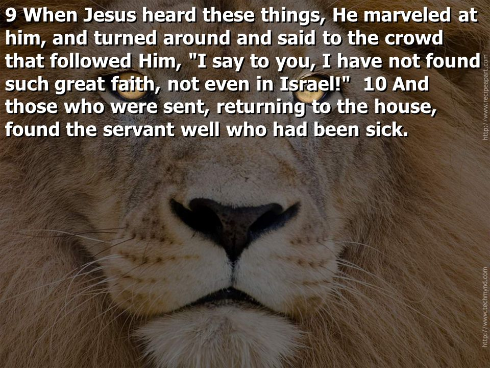 9 When Jesus heard these things, He marveled at him, and turned around and said to the crowd that followed Him, I say to you, I have not found such great faith, not even in Israel! 10 And those who were sent, returning to the house, found the servant well who had been sick.