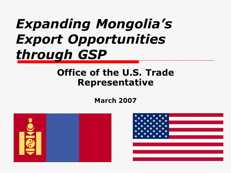 12 GSP-eligible Imports with Largest Trade but Lowest Percentages Claimed under GSP  Certain plastic articles for packing goods, including sacks and bags (MFN Rate 3%): 50.3% of $290,000 in U.S.