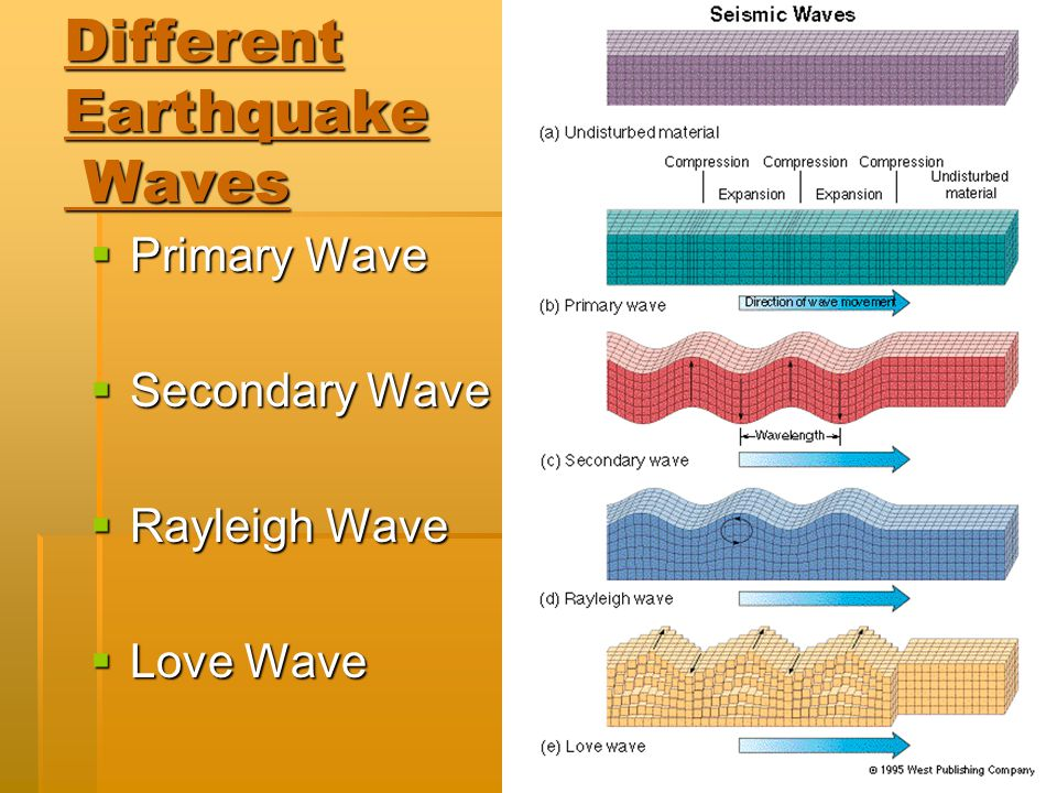 Different Earthquake Waves  Primary Wave  Secondary Wave  Rayleigh Wave  Love Wave