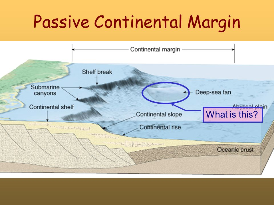 Passive Continental Margin What is this?
