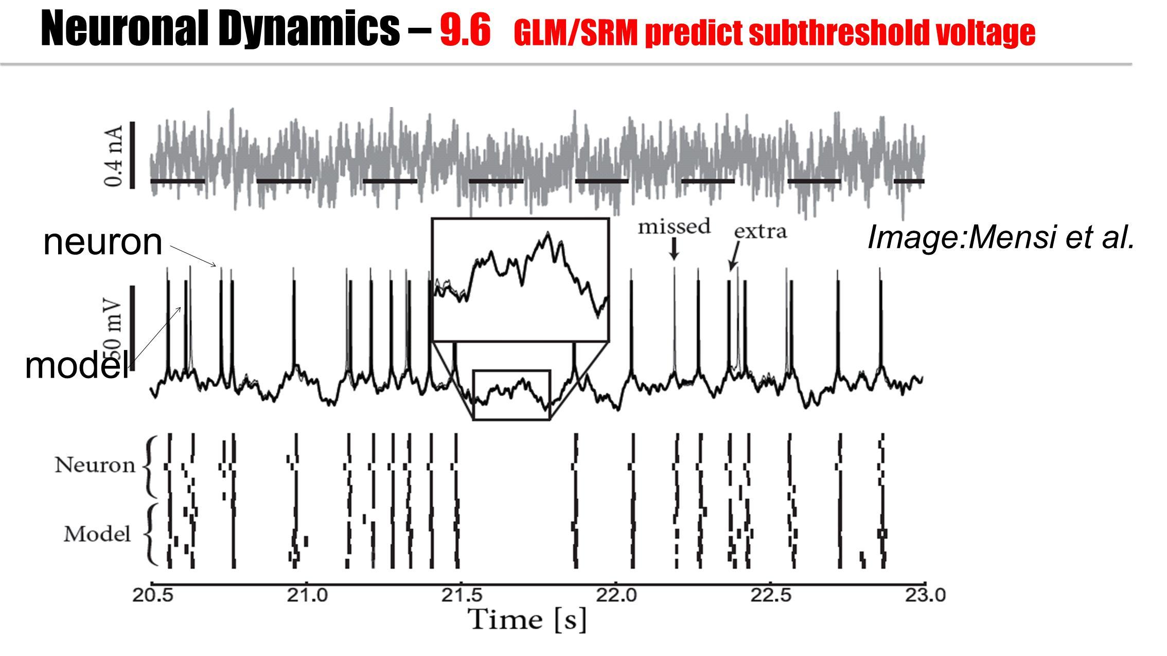 neuron model Image:Mensi et al. Neuronal Dynamics – 9.6 GLM/SRM predict subthreshold voltage