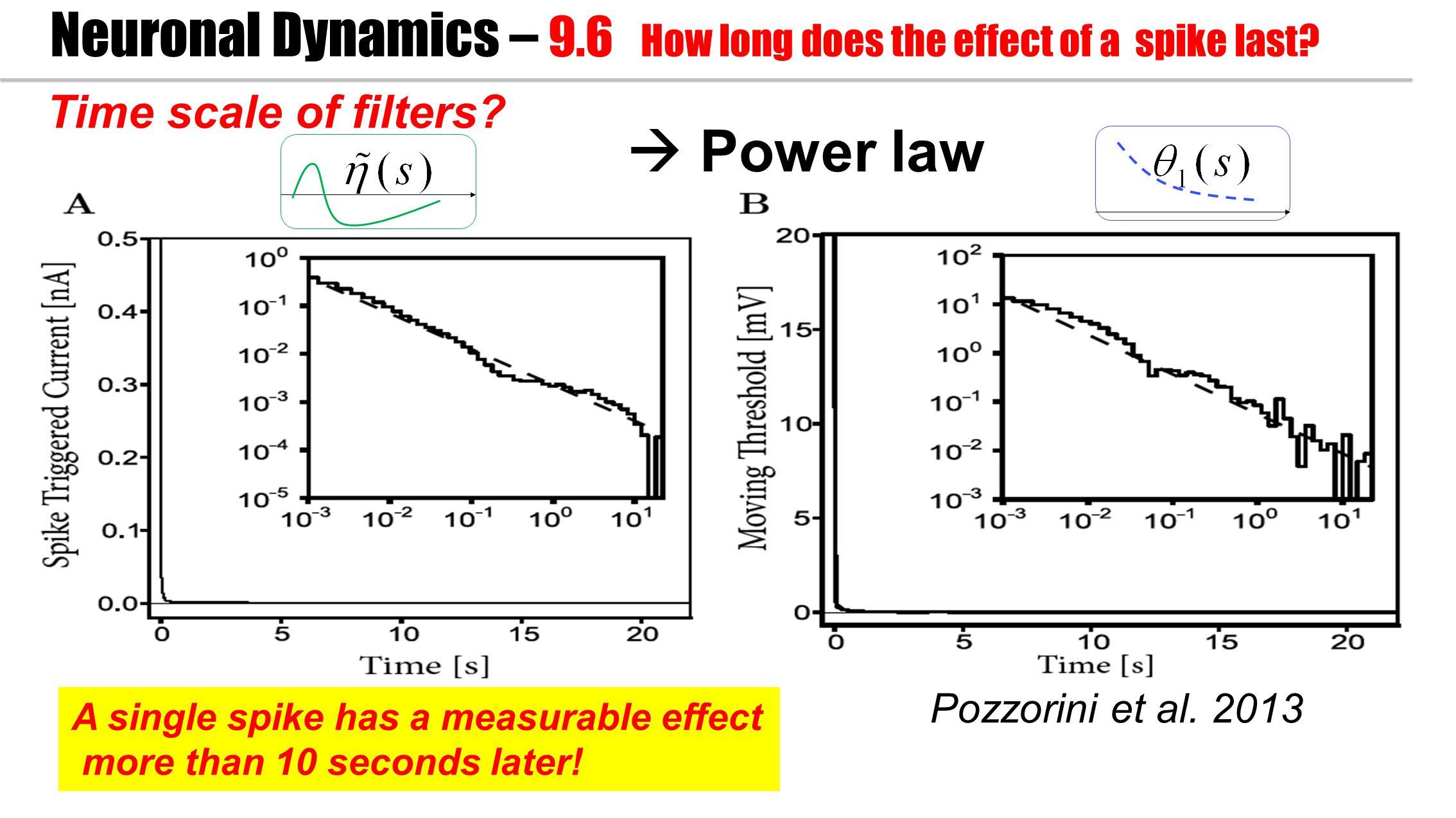 Pozzorini et al. 2013 Time scale of filters.