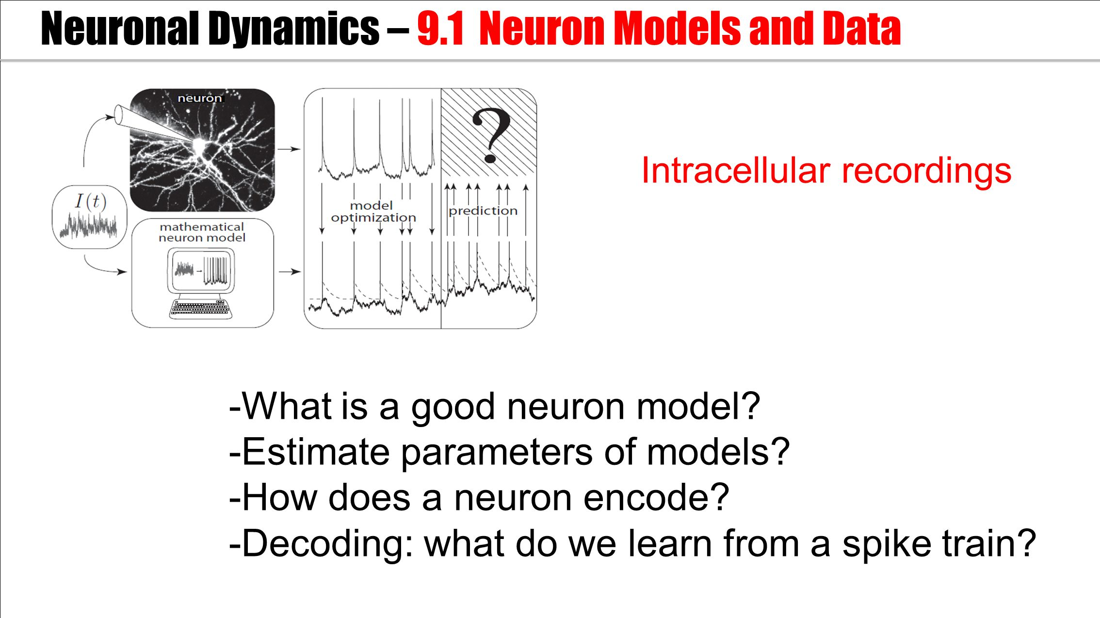 -What is a good neuron model.-Estimate parameters of models.