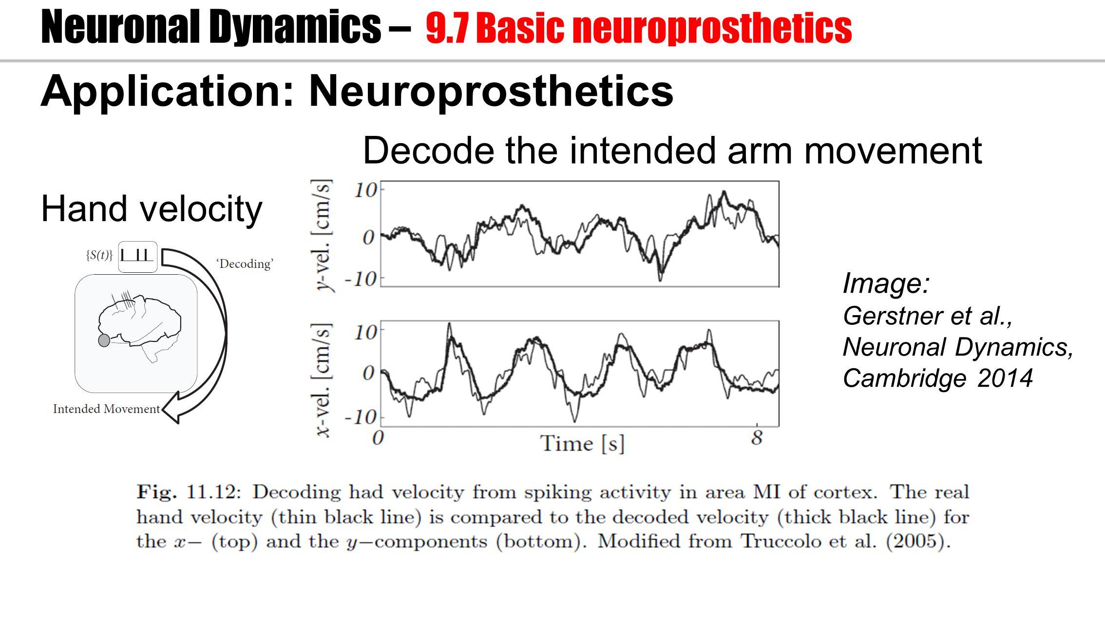 Application: Neuroprosthetics Hand velocity Decode the intended arm movement Neuronal Dynamics – 9.7 Basic neuroprosthetics Image: Gerstner et al., Neuronal Dynamics, Cambridge 2014