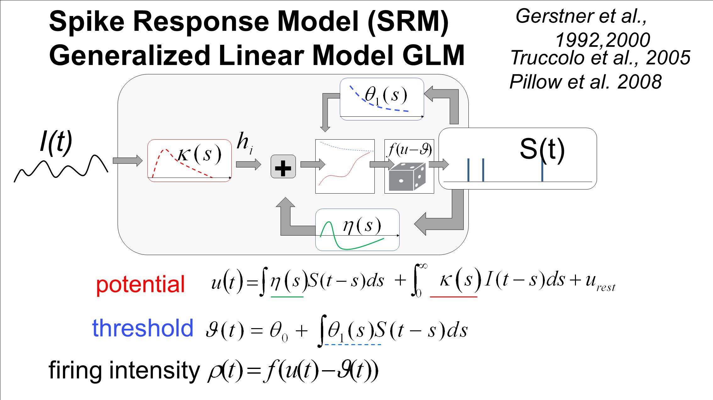 Spike Response Model (SRM) Generalized Linear Model GLM potential threshold firing intensity Gerstner et al., 1992,2000 Truccolo et al., 2005 Pillow et al.