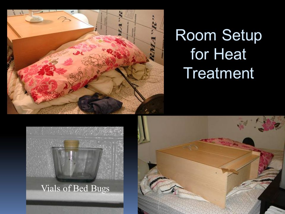 Room Setup for Heat Treatment Vials of Bed Bugs