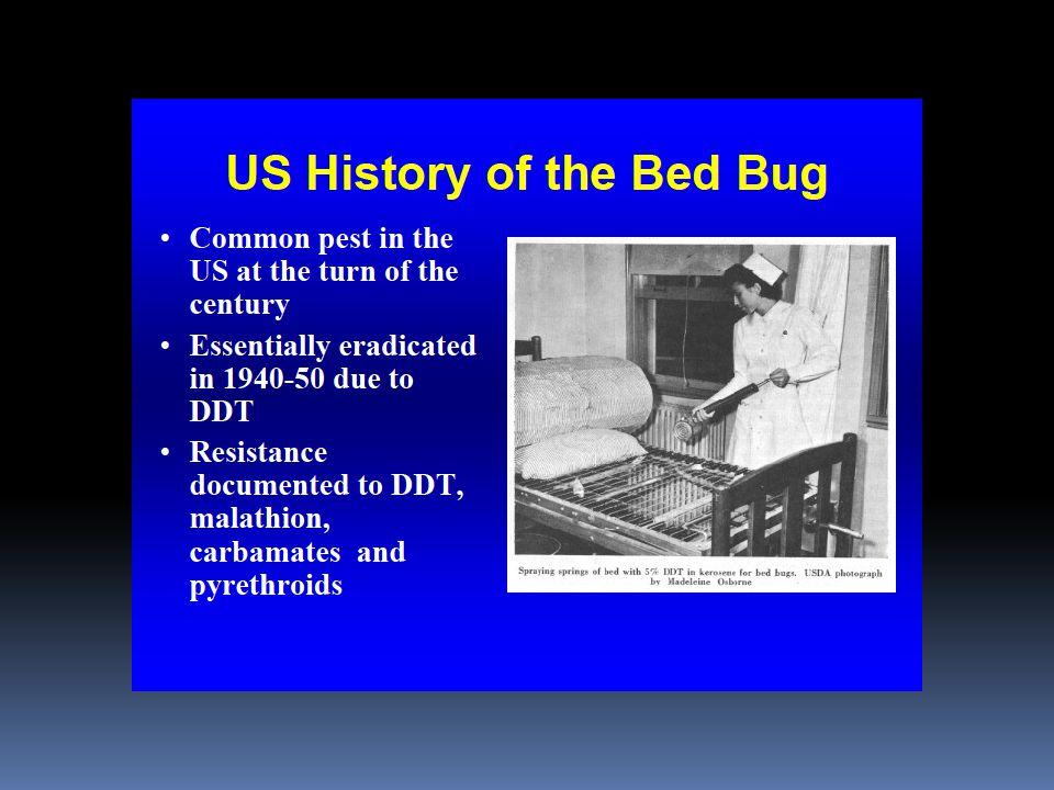 141 F Room Under mattress Under pillow Under mattress Under pillow