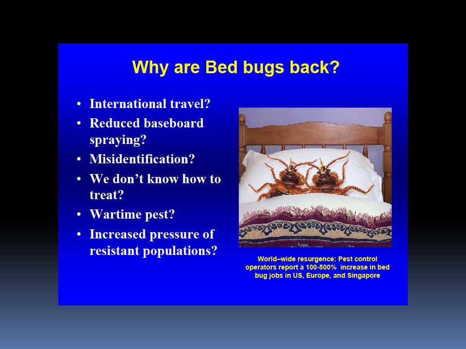 POST TREATMENT INSPECTION  MORE DIFFICULT INSPECTION  MUST LOOK FOR LIVE INSECTS AND EGGS  MUST SEARCH FURTHER AWAY FROM BED