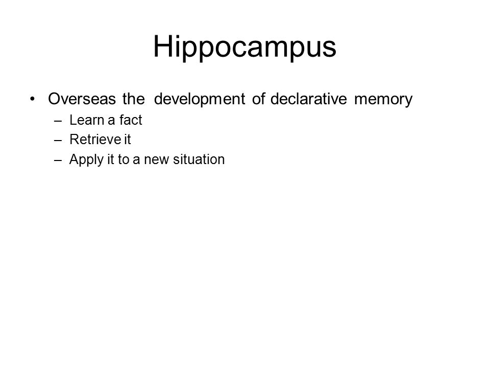 Hippocampus Overseas the development of declarative memory –Learn a fact –Retrieve it –Apply it to a new situation