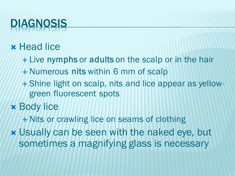  Head lice  Live nymphs or adults on the scalp or in the hair  Numerous nits within 6 mm of scalp  Shine light on scalp, nits and lice appear as y