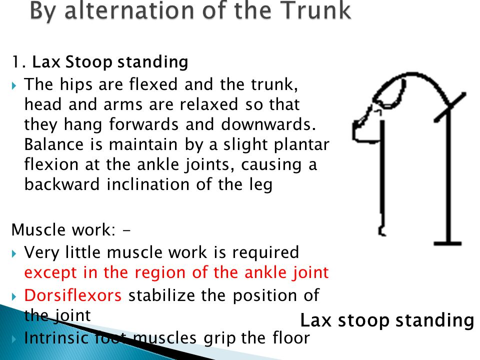1. Lax Stoop standing  The hips are flexed and the trunk, head and arms are relaxed so that they hang forwards and downwards. Balance is maintain by