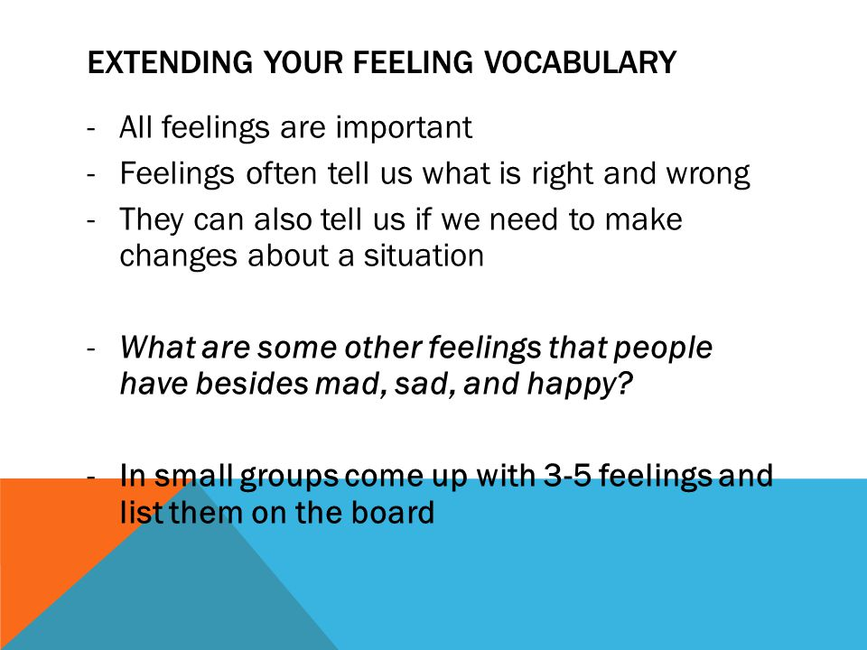 EXTENDING YOUR FEELING VOCABULARY -All feelings are important -Feelings often tell us what is right and wrong -They can also tell us if we need to mak