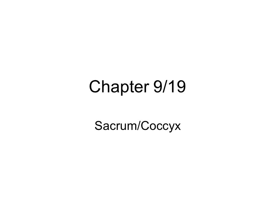Chapter 9/19 Sacrum/Coccyx