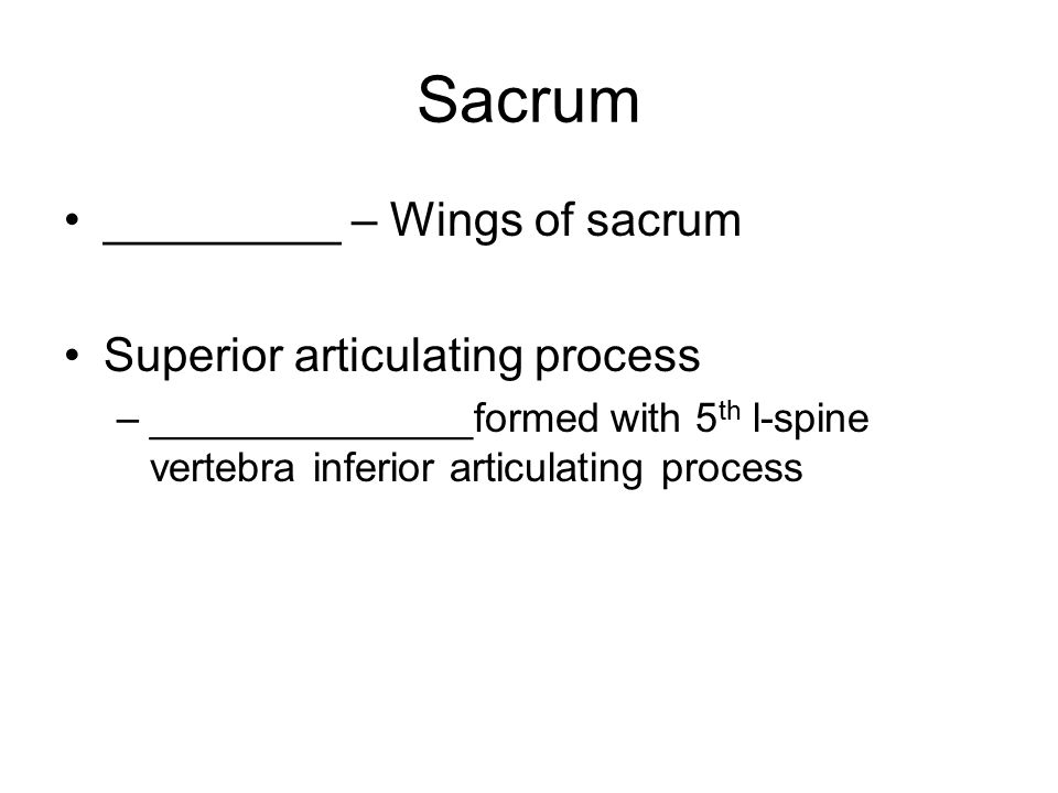 Sacrum _________ – Wings of sacrum Superior articulating process –______________formed with 5 th l-spine vertebra inferior articulating process