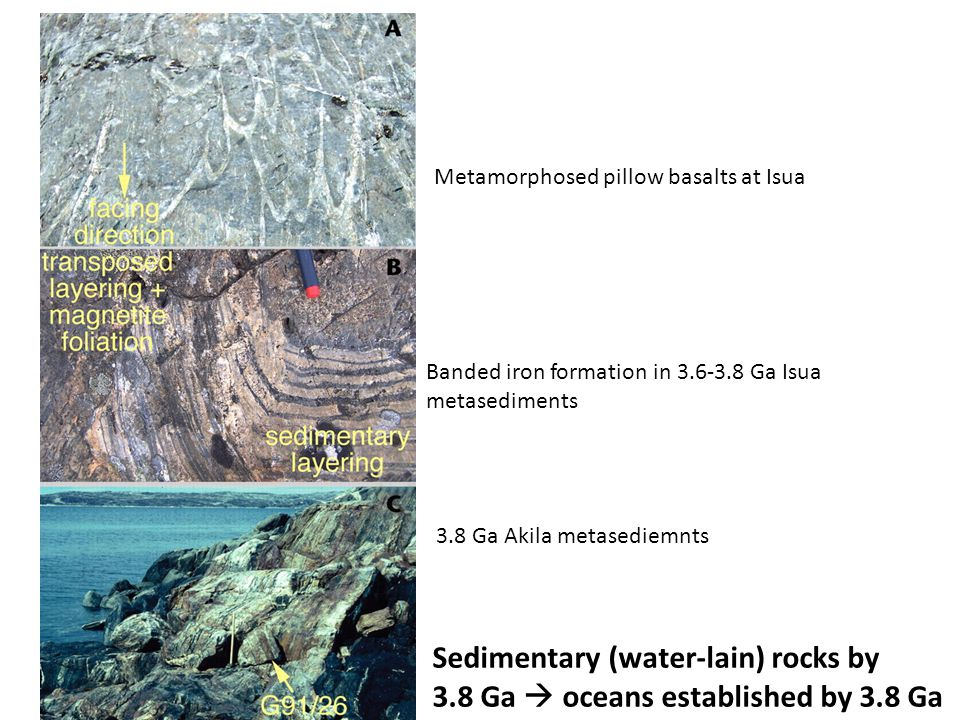 Banded iron formation in 3.6-3.8 Ga Isua metasediments Metamorphosed pillow basalts at Isua 3.8 Ga Akila metasediemnts Sedimentary (water-lain) rocks by 3.8 Ga  oceans established by 3.8 Ga