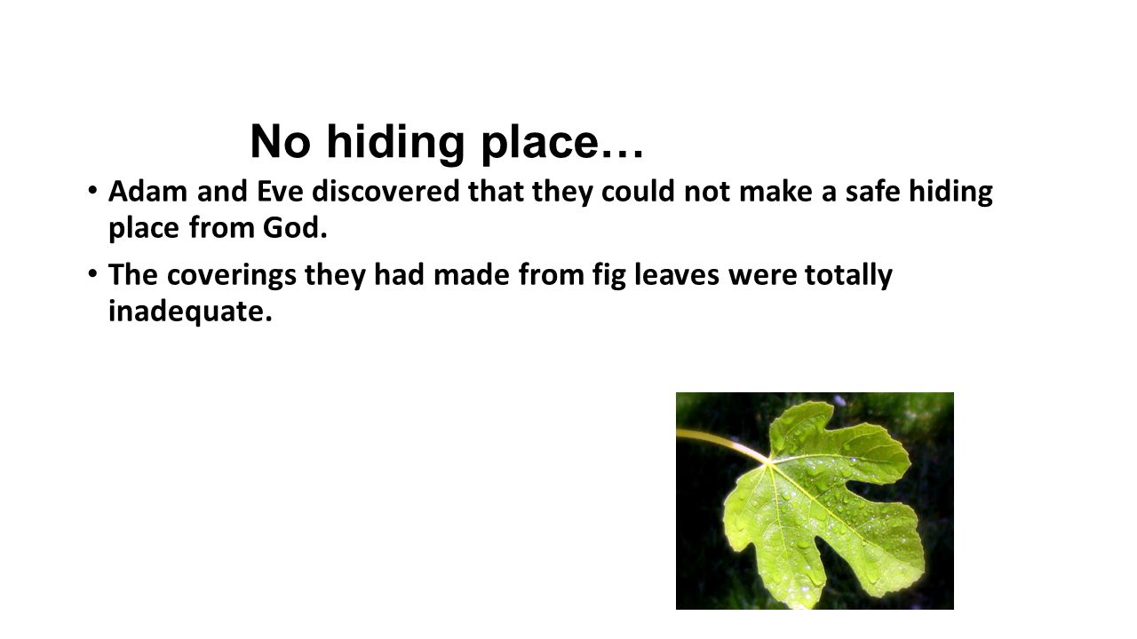 No hiding place… Adam and Eve discovered that they could not make a safe hiding place from God. The coverings they had made from fig leaves were total