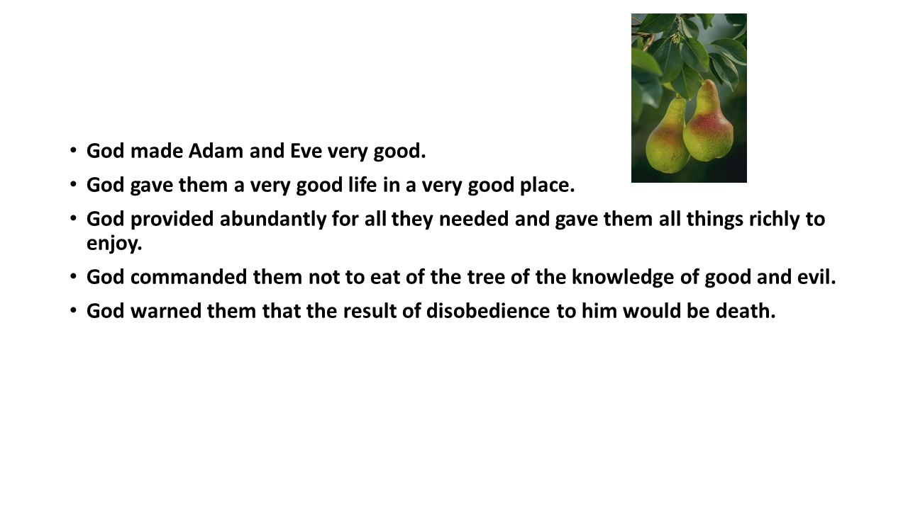 God made Adam and Eve very good. God gave them a very good life in a very good place.