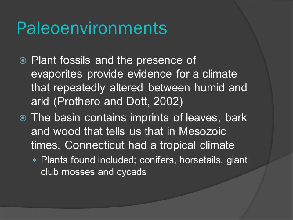 Paleoenvironments  Plant fossils and the presence of evaporites provide evidence for a climate that repeatedly altered between humid and arid (Prothero and Dott, 2002)  The basin contains imprints of leaves, bark and wood that tells us that in Mesozoic times, Connecticut had a tropical climate Plants found included; conifers, horsetails, giant club mosses and cycads