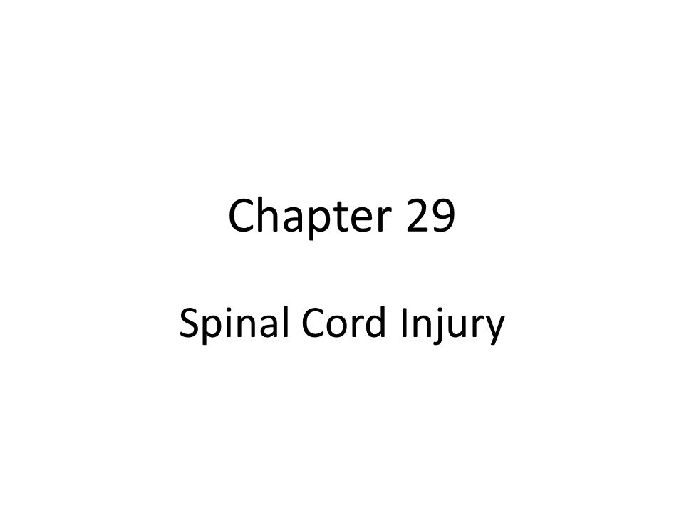 Objectives Discuss major causes of spinal cord injury Discuss common spinal cord injuries and their classifications Describe the nursing management of the client with a spinal cord injury.