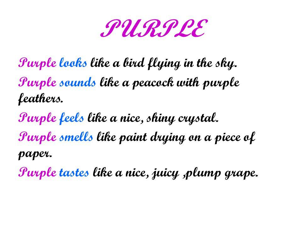 PURPLE Purple looks like a bird flying in the sky.