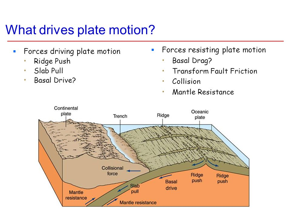 What drives plate motion?  Forces driving plate motion Ridge Push Slab Pull Basal Drive?  Forces resisting plate motion Basal Drag? Transform Fault