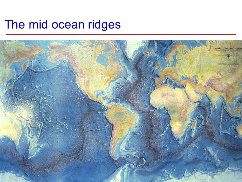 The mid ocean ridges
