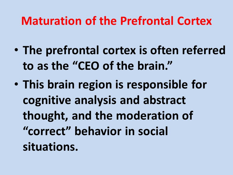Maturation of the Prefrontal Cortex The prefrontal cortex is often referred to as the CEO of the brain. This brain region is responsible for cognitive analysis and abstract thought, and the moderation of correct behavior in social situations.