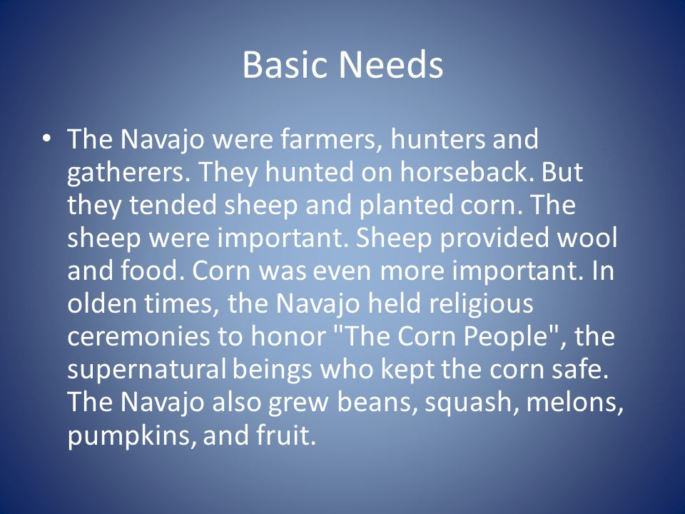 Basic Needs The Navajo were farmers, hunters and gatherers. They hunted on horseback. But they tended sheep and planted corn. The sheep were important