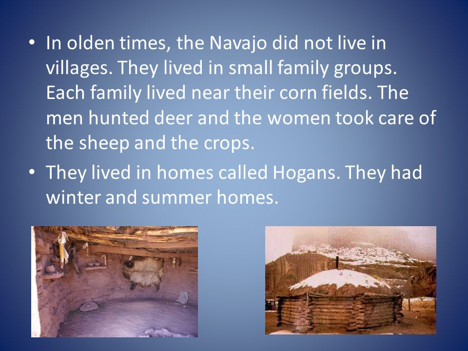 In olden times, the Navajo did not live in villages. They lived in small family groups. Each family lived near their corn fields. The men hunted deer