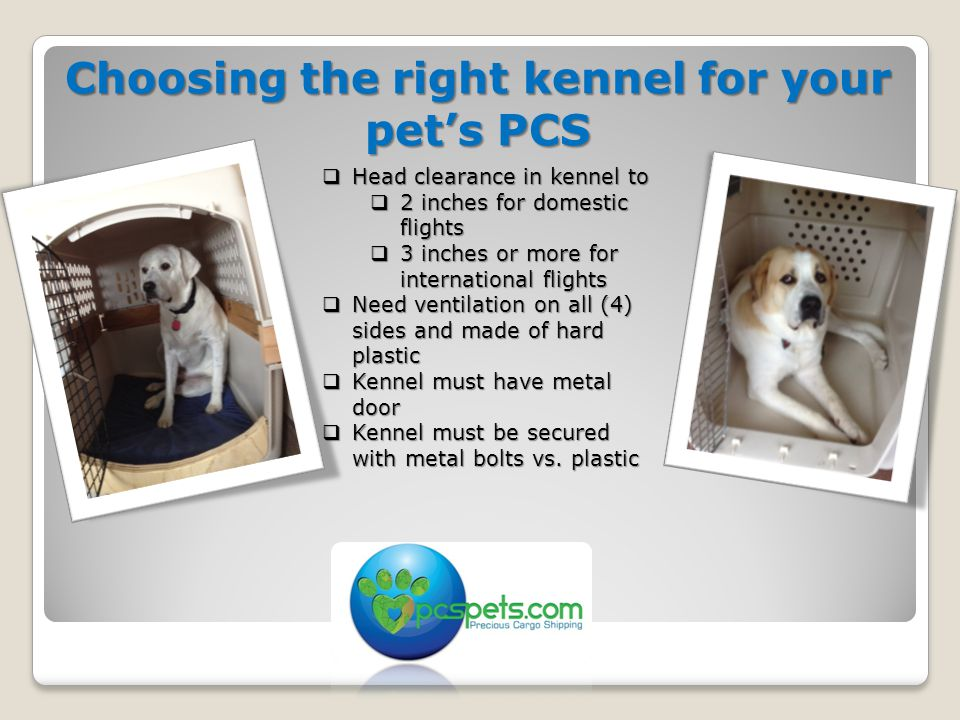 Choosing the right kennel for your pet's PCS  Head clearance in kennel to  2 inches for domestic flights  3 inches or more for international flights  Need ventilation on all (4) sides and made of hard plastic  Kennel must have metal door  Kennel must be secured with metal bolts vs.