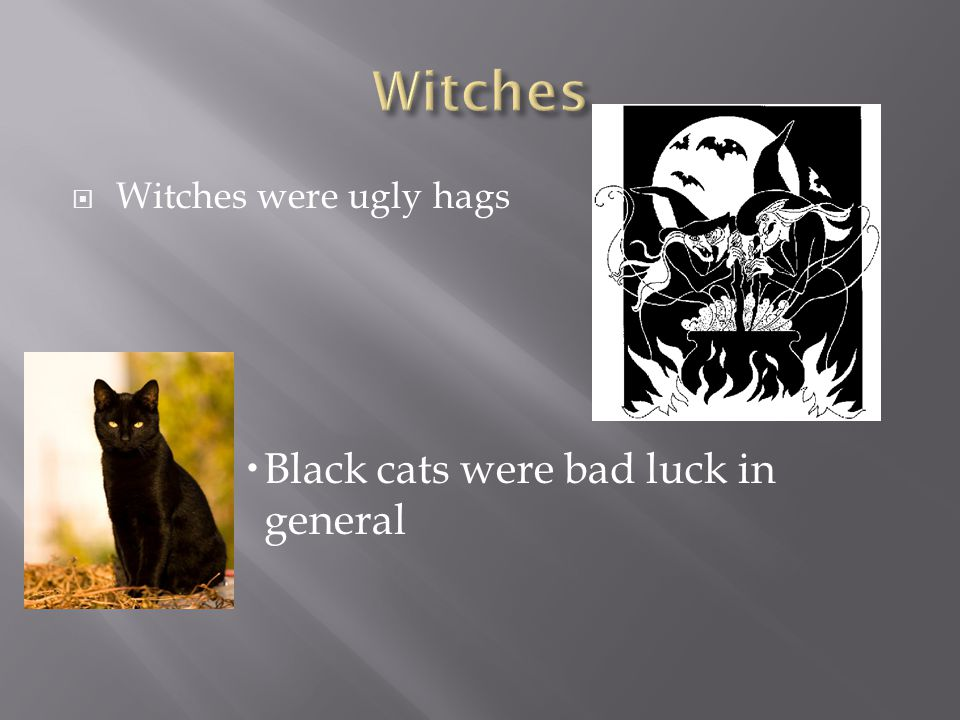  Witches were ugly hags  Black cats were bad luck in general