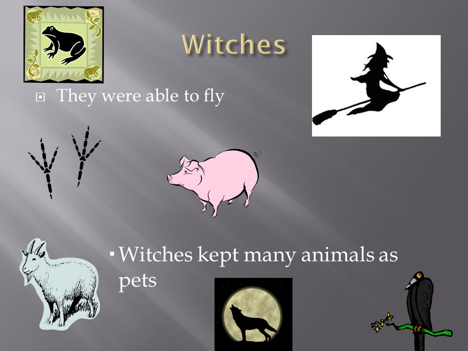  They were able to fly  Witches kept many animals as pets