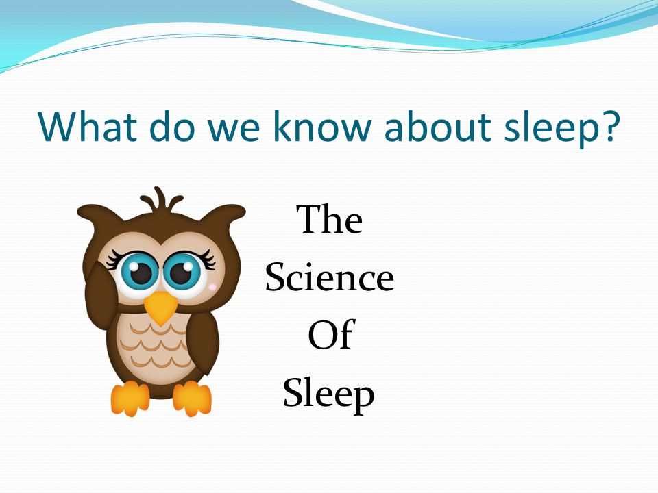 What do we know about sleep The Science Of Sleep