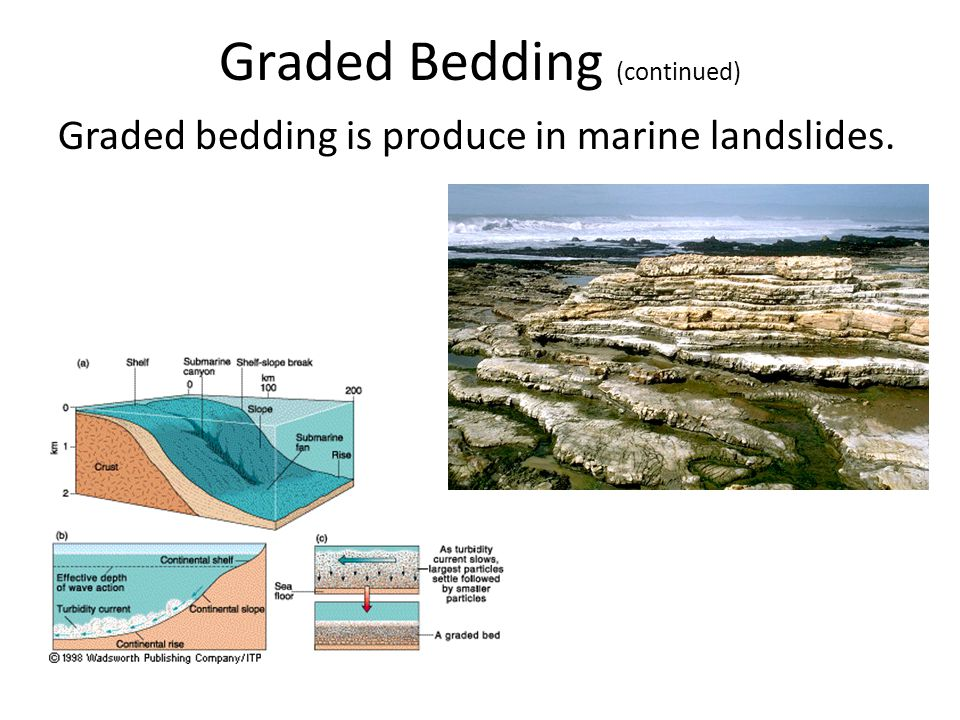 Graded Bedding (continued) Graded bedding is produce in marine landslides.